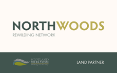Northwoods Network Logo